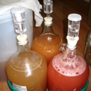 meadmaking