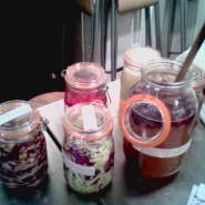 More multi ferments.